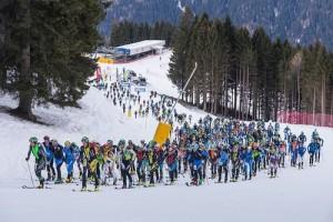 Ski Alp Val Rendena